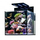Aqua Medic Cubicus - komplett 140 literes tengeri akvárium