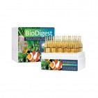 Prodibio BioDigest szűrőbaktérium koncentrátum 30 ampulla