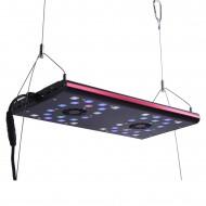 Semigrow IT5040 Led világítás
