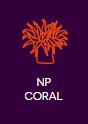 nem fotoszintetizáló korallok