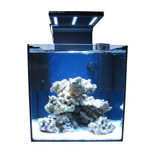 """Korallszirt Nano Start """"Felfedező Szett"""""""