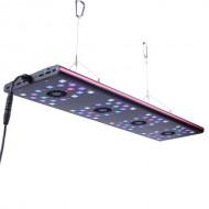 Semigrow IT5080 Led világítás
