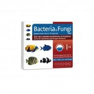 Prodibio gombás és bakteriális fertőzések elleni gyógyszer tengeri halak számára